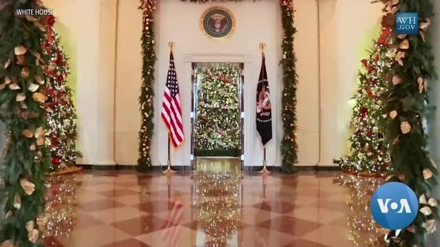 The Holidays and US Presidential Pets
