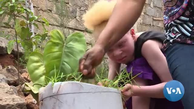 Kenyan Advocacy Group Works to Counter Stigma and Superstitions About Albinos