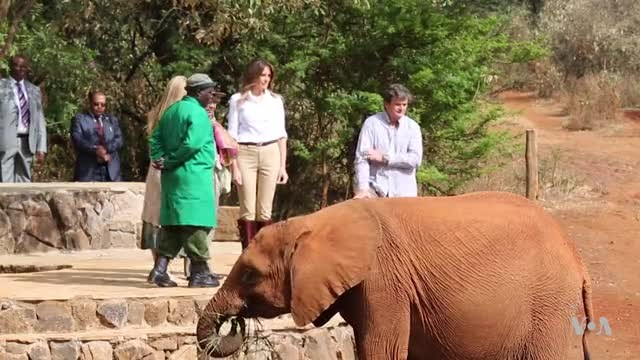 Melania Trump Visits Kenyan Children and Elephants
