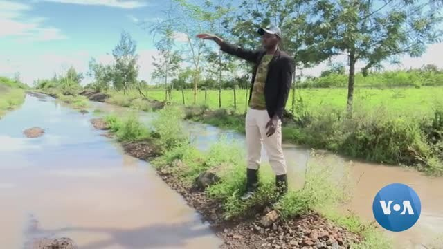 Climate Change Threatening Kenya's Smallholder Farm Crop Production