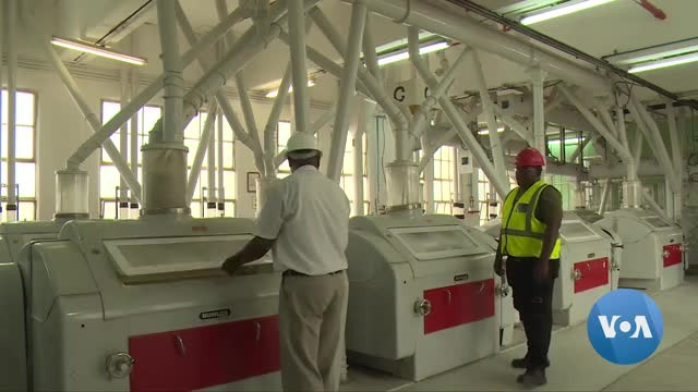 Bread Shortage Feared in Zimbabwe as Wheat Mills Shut Down